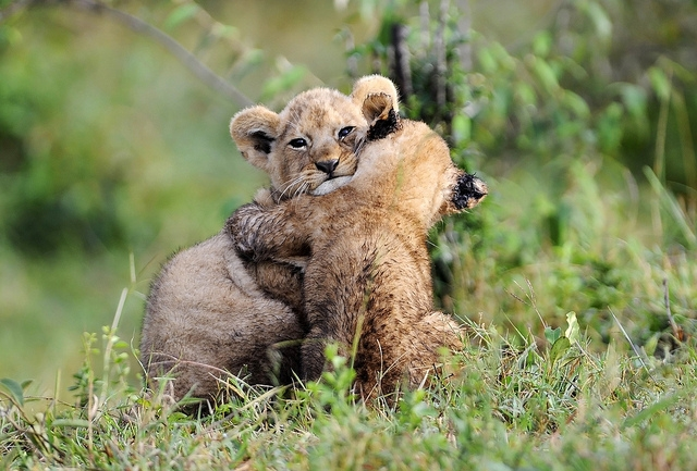 hugging mom